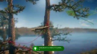 Unravel-実績イーグルアイ解除参考動画