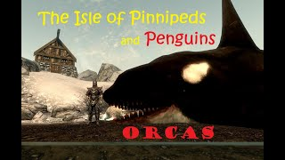 The Isle of Pinnipeds and Penguins