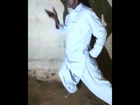 Latest Indian Dance Steps