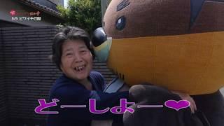 2019/06/25放送・知ったかぶりカイツブリにゅーす