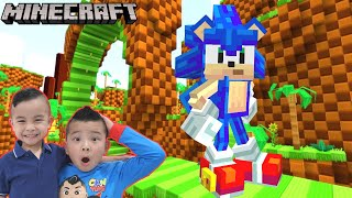 NEW Sonic Game in Minecraft!! CKN Gaming