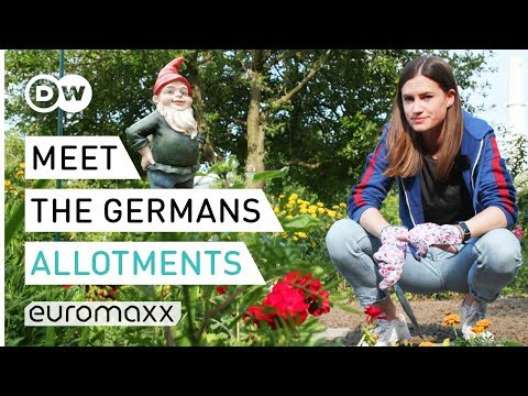Allotments: Why the Germans love their garden colonies | Meet the Germans