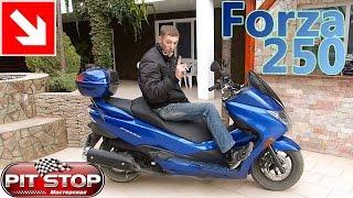 Honda Forza 250 2010 г.в. Моё мнение