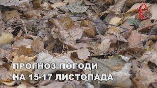 Прогноз погоди на вікенд 15-17 листопада: сухий період триватиме