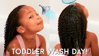 Toddler Curly Hair Wash Day Routine | Kid Friendly Tutorial For Easy Detangling + Moisturized Curls!