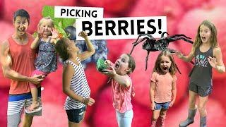 LIVING THE WAY Vlog // Picking Berries!