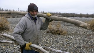 Unusually Warm Arctic Weather Impacts Food Supply