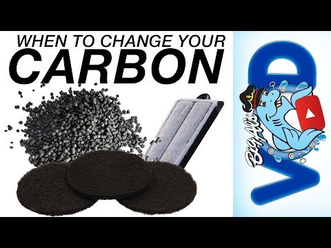 Preventative Tips: Change Up Your Carbon (Video)