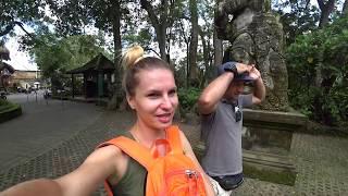 Отдых на Бали 2019 Убуд смотрим Лес Обезьян и становимся свидетелями Гоп-Стопа Достопримечательности