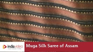 Weaving the Muga Silk Saree of Assam