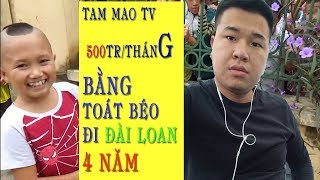 """"""" Tam mao tv """" thu nhập hàng trăm triệu đồng mỗi tháng từ kênh youtube"""