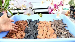 How to make best Potting Mix for Orchid | English Subtitle | Prakriti's Garden