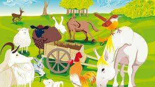 Aprende El sonido de los animales  en 3d