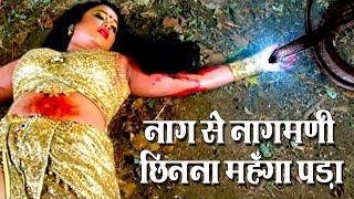 Movie Uncut Scene - नाग से नागमणि छीनना महँगा पड़ा - Nagin Ka Insaf - Rani Chaterji - Yash Mishra