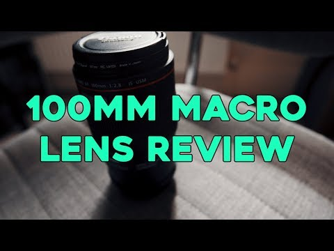 Canon 100mm Macro Lens review (2018)