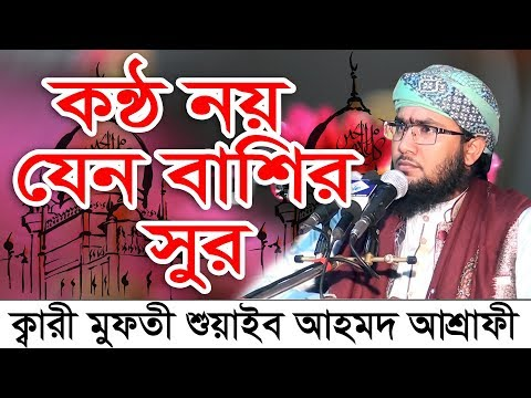 কন্ঠ নয় যেন বাশির সুর Bangla Waz 2018 Shuaeb Ahmed Ashrafi