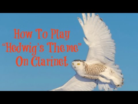 """""""Hedwig's Theme"""" Tutorial for Clarinet"""