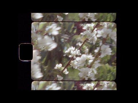 Enough Honey Lyrics – A Fine Frenzy (Alison Sudol)