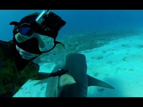 GoPro Commercial for GoPro HD Hero2 (2012) (Television Commercial)