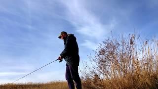 Клев рыбы в ставрополе на 5 дней