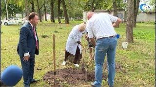 Члены общественной палаты посадили яблони в память о выборах