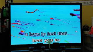 A love to Last by Donna Cruz