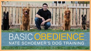 Basic Obedience Dog Training Course - FULL COURSE FREE on YouTube!