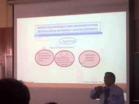 La psoriasis la agudización que untar
