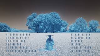 YUGEN BLAKROK   04 Hibiscus Feat. Historian Himself & Fifi The Raiblaster (Anima Mysterium)