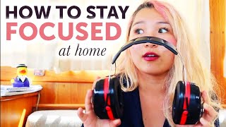 how to stay focused while studying from home 📚🧠