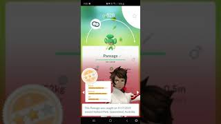 Pansage Evolution - Pokémon Go