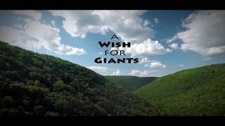Trailer of A Wish for Giants (2018)
