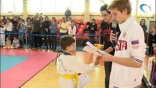 В Великом Новгороде прошел турнир по тхэквондо памяти журналиста Александра Бирюкова