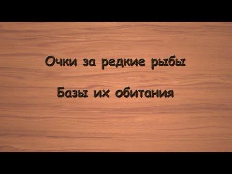 Русская Рыбалка 3.99 Очки за редкие рыбы