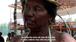 Mensagem de Fátima Paumari - 2015