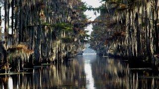 Самое интересное в мире. Мистическое озеро Каддо.