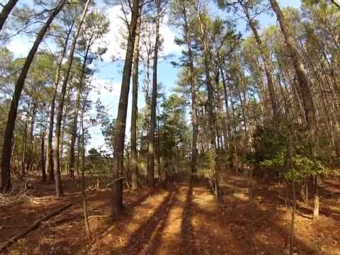 Rabbit Hunt With Beagles In Cambridge, Maryland - GoPro Watch In 720p HD Mp3