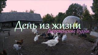 Деревенские будни // День из жизни.