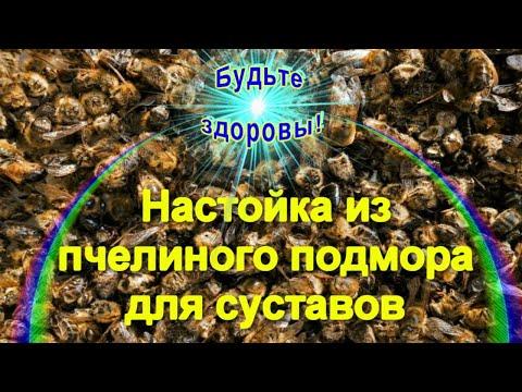 Настойка из пчелиного подмора для суставов