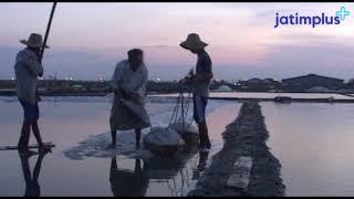 Buruh Tani Garam Surabaya dari Kalianget, Madura