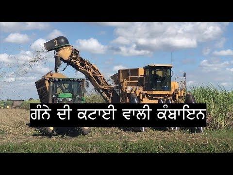 Pendu Australia | Punjabi Travel Show | Episode 60 | Sugarcane Harvesting & Information