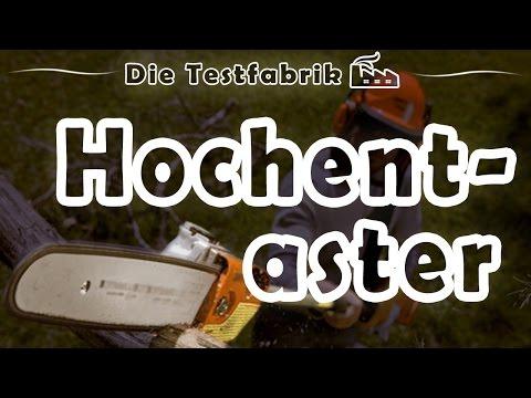 🌳 Hochentaster Test – 🏆 Top 3 Hochentaster im Test