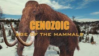 Cenozoic: Age Of The Mammals