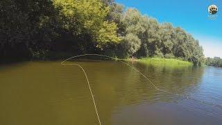 Шнур для нахлыстовой ловли рыбы