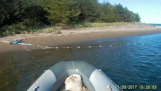 Залив мордвинова рыбалка на кету поплавочной удочкой