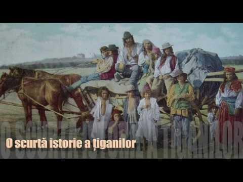 O istorie a tiganilor