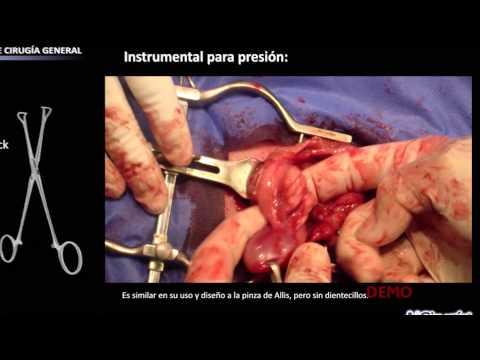 Instrumental de cirugía general   Demo