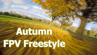 Autumn FPV Freestyle   DJI FPV System   ARMATTAN BADGER   GOPRO SESSION 5  