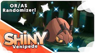 Venipede  - (Pokémon) - [Live] Shiny Venipede in ONLY 15 Hordes in the Omega Ruby Randomizer!