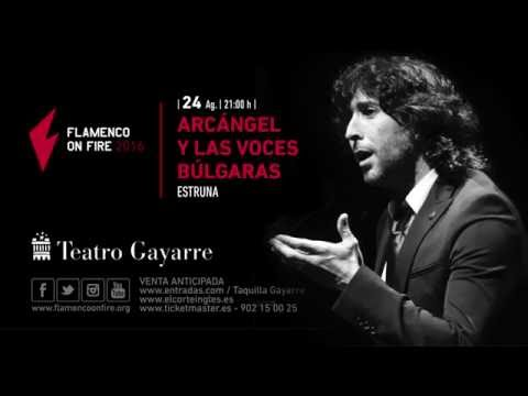 Previsualización de FLAMENCO ON FIRE 2016